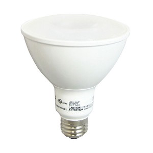 LED PAR30 - 12W - 5000K Cool White